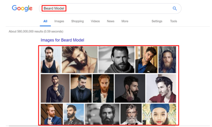 Google Images for Beard
